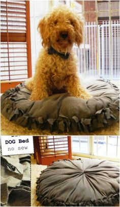 diy doggy bed with fringe inside so the pup doesn\u0027t chew on it.   Dog Stuff   Pinterest   Dog beds Pup and Dog & diy doggy bed with fringe inside so the pup doesn\u0027t chew on it ... pillowsntoast.com