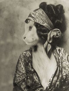 """""""La Chatte"""" anthropomorphic altered photo by Bainay - place entry in Animal Renaissance 16 Crazy Cat Lady, Crazy Cats, Sphynx, Silent Film Stars, Fancy Cats, Cat People, Animal Heads, Photomontage, Photoshop Design"""