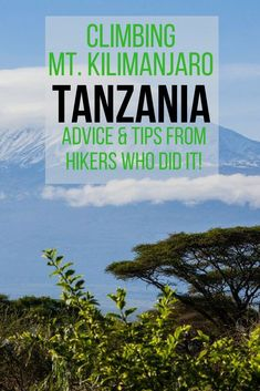Planning to climb Mount Kilimanjaro, Africa's Tallest Point in Tanzania? This interview with two hikers who reached the summit includes advice, tips, and insight as to what to expect! Travel Advice, Travel Guides, Travel Tips, Tanzania, Kilimanjaro Climb, Africa Destinations, Safari, Africa Travel, Family Travel