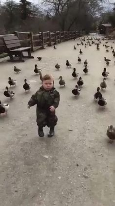 Cute Funny Baby Videos, Cute Funny Babies, Funny Kids, Funny Cute, Funny Animal Images, Cute Animal Videos, Cute Little Animals, Cute Funny Animals, Cute Baby Dogs