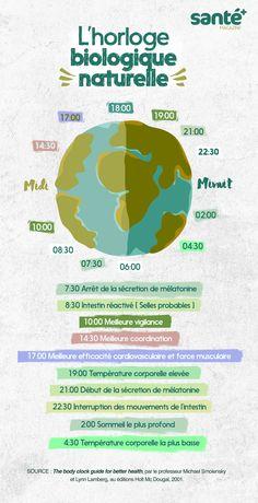 horloge biologique, sommeil, naturelle, horaires, santé, saviez-vous ? santé+