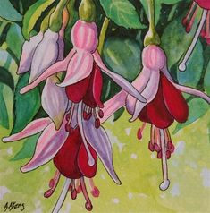 """Daily Paintworks - """"Storybook Cottage Flowers-Fuchsia"""" - Original Fine Art for Sale - © Alida Akers"""