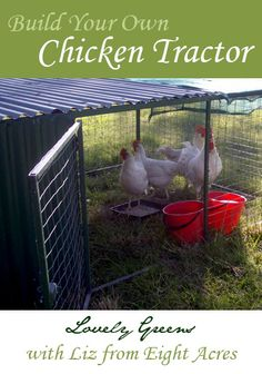 How to Build a Chicken Tractor - Emily Chilton This might interest you!