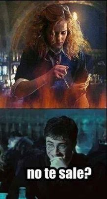 Me dice eso y le pego😂😂 Harry Potter Ron And Hermione, Harry Potter Friends, Harry Potter Tumblr, Harry Potter Facts, Harry Potter Fan Art, Harry Potter Books, Harry Potter Fandom, Harry Potter Hogwarts, Harry Potter World