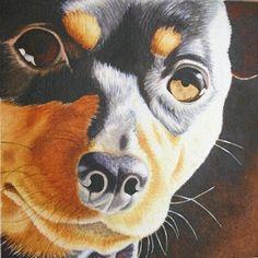 Michelle Goll Smith's Art Gallery - Miniature Pinscher Fuzzy Mug Watercolor