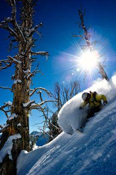 2011 Ski Salt Lake Shootout: 1st Place Portfolio. Photographer: Garrett Grove / Athlete: Jason West / Resort: Solitude.