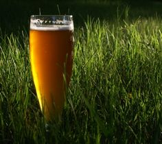 Herbal beers - Protestant Reformation profoundly affects the beer we enjoy today