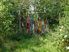 totempoles at the edge of the forest