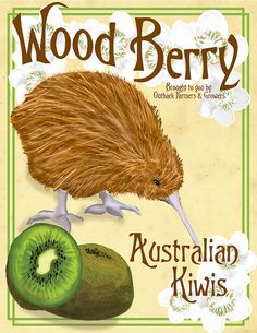Inspired by vintage fruit crate labels from the 1920's and partially from the Art Nouveau movement, this piece features as a potential label for kiwi fruit. The animal is actually an Australian kiwi for which the popular fruit is named. The flowers f