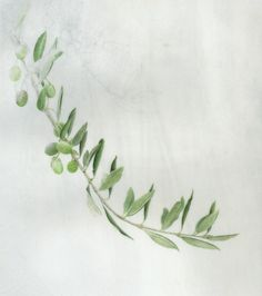 """Olive leaves, olive leaves and more olive leaves. This painting is really taking me back. It's hard to forget the effect of hundreds of olive trees. The wind catches the delicate silver leaves and the air seems to be magically shimmering with golden """"silvery-ness"""". I know that's not a word, but it really …"""