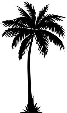 Palm Tree Silhouette PNG Clip Art Image