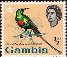 Gambia 1963 Birds SG 193 Beautiful Sun Bird Fine Mint SG 193 Scott 175 Other Commonwealth stamps here