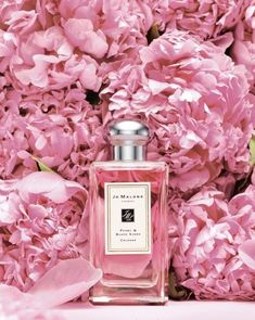 How to Cut Back on Perfume and Still Smell Delicious Who doesn't love peonies? Sweet perfume* lady fragrances* apply perfume *smell great *popular choice* pin it! Parfum Victoria's Secret, Perfume Vintage, Perfume Glamour, Parfum Chanel, Perfume Diesel, Beautiful Perfume, Everything Pink, Pink Peonies, Everyday Makeup