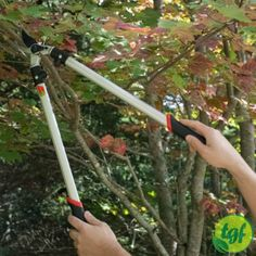 Lightweight Long Handled Loppers.The 24 Bypass Loppers are...