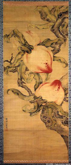 Iwai Jiang Yun