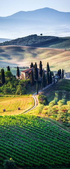 Colors of Tuscany, Italy
