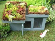 Elegant Chicken Coop   ... Creative and Innovative Chicken Coop Designs   thepoultryguide.com