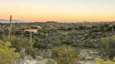 Tucson Real Estate Newsletter May 2017 Real Estate Update  Latest Tucson Real Estate Newsletter May 2017 And Things to Do in Tucson AZ! Welcome to the Tucson Real Estate Newsletter May 2017 Tucson Real Estate Newsletter May 2017 -…