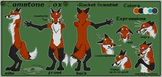 artist reference photos fox | Fantastic Mr. Fox - Reference Sheet by ChaosCanine on DeviantArt