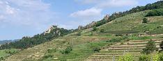 Wachau: Welterbesteig Etappe 1 – von Krems nach Dürnstein Vineyard, Outdoor, Vine Yard, Ruins, Hiking, World, Outdoors, Vineyard Vines, Outdoor Games