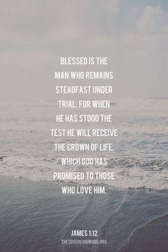 James 1:12 #christian #faith #truth #scripture #james1v12