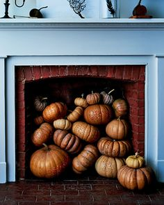 31 Of Our Best Pumpkin Carving And Decorating Ideas - Halloween Makeup Spooky Halloween, Easy Halloween Decorations, Homemade Halloween, Outdoor Halloween, Halloween Pumpkins, Halloween Movies, Halloween Party, Halloween Costumes, Martha Stewart Halloween