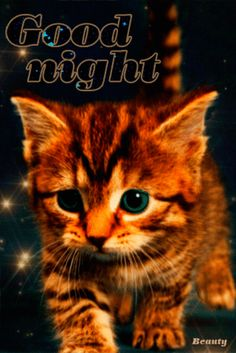 Good Night My Friend, Good Night Everyone, Good Morning Gif, Good Morning Good Night, Morning Msg, Valentine Verses, Gifs, Happy Weekend Images, Optical Illusion Gif