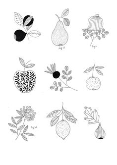 Botanical fruit print. By Ryn Frank http://www.rynfrank.co.uk