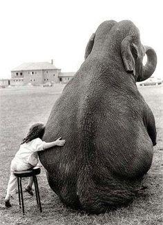 Podemos aprender a amar qualquer pessoa. Qualquer animal. Qualquer um. Basta tentar.