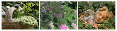 Connoisseur Jardim: jardim mediterrânico