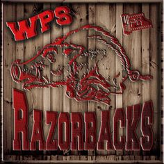 Arkansas Razorbacks WPS
