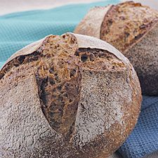 A versatile walnut bread, perfect for a Thanksgiving leftovers sandwich or toast for breakfast.