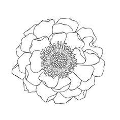 stamp review crew blended bloom mother 39 s day project set kelly kent. Black Bedroom Furniture Sets. Home Design Ideas
