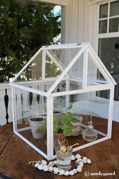 DIY photo farme greenhouse