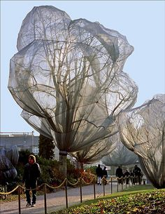Christo and Jeanne-Claude wrapped 178 trees in Berower Park / Beyeler Foundation north-east of Basel between 13 November and 14 December 1998. To wrap the trees, the couple used 55,000 m2 of silver-grey shiny polyester fabric and 23 km of rope. A pattern had to be made for each individual tree and so the natural shape of the branches pushed the fabric outwards, creating individual shapes in the sky. The trees varied in height from 2 to 25 meters and in width from 1 to nearly 15 meters.