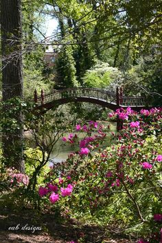 Crim Dell Bridge, Virginia. This spot will always have a place in my heart.