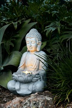 japanischer garten Channel the peace and tranquillity of a zen garden with our Wategos Buddha fountain light. Made from natural concrete, this premium-quality outdoor decoration makes the perfect statement piece for your garden. Garden Fountains, Garden Statues, Outdoor Statues, Small Japanese Garden, Japanese Gardens, Fountain Lights, Buddha Decor, Pergola Garden, Backyard