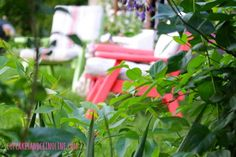 The Secret to Creating a Cozy and Charming Outdoor Space ~ view of garden space from behind ~ cupcakesandcrinoline.com
