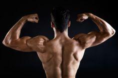 Para trabalhar os bíceps temos à nossa disposição uma gama enorme de exercícios…