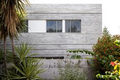 Huge windows line the walls of this concrete house in Tel Aviv, shedding natural light across the interior and allowing the family views of the garden. Concrete Architecture, Amazing Architecture, Studio Build, Enclosed Patio, Huge Windows, Cool Landscapes, House 2, Best Location, Best Interior