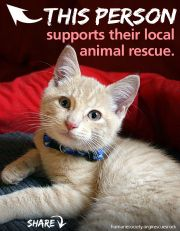 it's National Animal Shelter and Rescue Appreciation Week! Nov. 3-9
