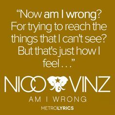 am i wrong-nico&vinz