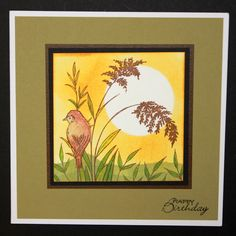 This is the gorgeous new Birds & Grasses set designed by Sharon Bennett for Hobby Art. This Stunning card was made by Jenny Mayes. Verkrijgbaar bij www.multihobby.nl