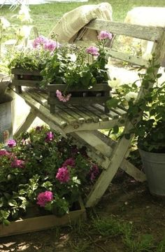 Shabby garden chair with these sweet purple flowers from the potting shed are all going to Irma's Peaceable Lane Organic Farm tomorrow.....................