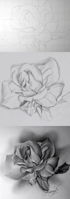 Artist Lee Hammond explains how to draw a rose with graphite in this free mini-lesson on flower drawing for beginners at ArtistsNetwork. >>> You can find out more details at the link of the image. Pencil Art, Pencil Drawings, Flower Drawings, Flower Sketch Pencil, Inspiration Art, Drawing Techniques, Learn To Draw, What To Draw, Art Auction