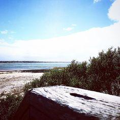 The Bluff Steps   #barwonbluff #river #ocean #nature  #aguideto #aguidetobarwonheads #smallbusiness #shoplocal #livelovelocal #instagood #photography #ocean #beach #surf #fun #amazing #art #summer  #barwonheads #oceangrove #bellarine #bellarinepeninsula #gtown #geelong #melbourne #visitvictoria #tourismgeelong #australia #seeaustralia #visitgeelongbellarine by a_guide_to_barwonheads http://ift.tt/1JO3Y6G