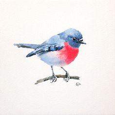 Watercolor Bird Pink Robin