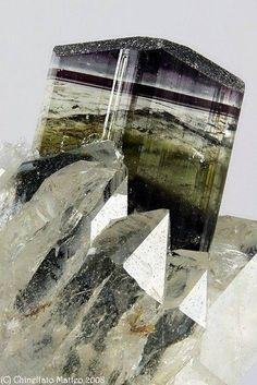 Elbaite with quartz -- Rosina vein, San Piero in Campo, Campo nell'Elba, Elba Island, Livorno Province, Tuscany, Italy