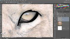 This tutorial is all about hand-painting a majestic image of a lion with Adobe Photoshop. Learn how to resample an image to make sure you're working with the...