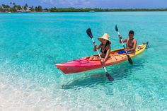 20 Ultimate Things to Do in the Cayman Islands 20 Ultimate Things to Do in the Cayman Islands From shopping to spelunking, here are 20 must-do things in the Cayman Islands.<br> From shopping to spelunking, here are 20 must-do things in the Cayman Islands. Cayman Islands, Grand Cayman Island, Cool Places To Visit, Places To Travel, Places To Go, James Bond Auto, Caribbean Islands To Visit, The Cure, Desert Island